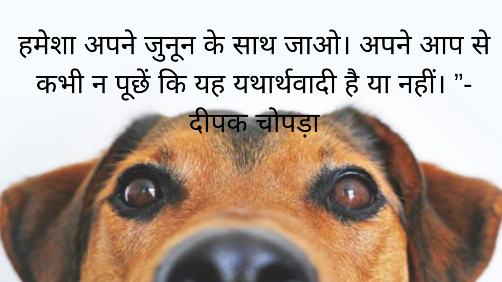 positive thinking motivational quotes in hindi, motivational quotes in hindi and english,