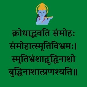 gita quotes in hindi, bhagavad gita quotes in hindi, geeta quotes in hindi, gita updesh quotes, bhagwat geeta quotes in hindi, bhagavad gita quotes in hindi meaning, gita ke anmol vachan in hindi,