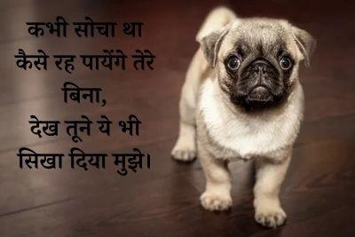 Mood off shayari In Hindi - मूड ऑफ शायरी -