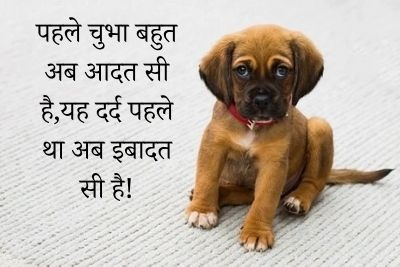 very heart touching sad quotes in hindi, sad lines in hindi, sad shayari images, sad quotes in hindi, sad shayari image download, Sad shayari, sad shayari pic, hindi shayari sad